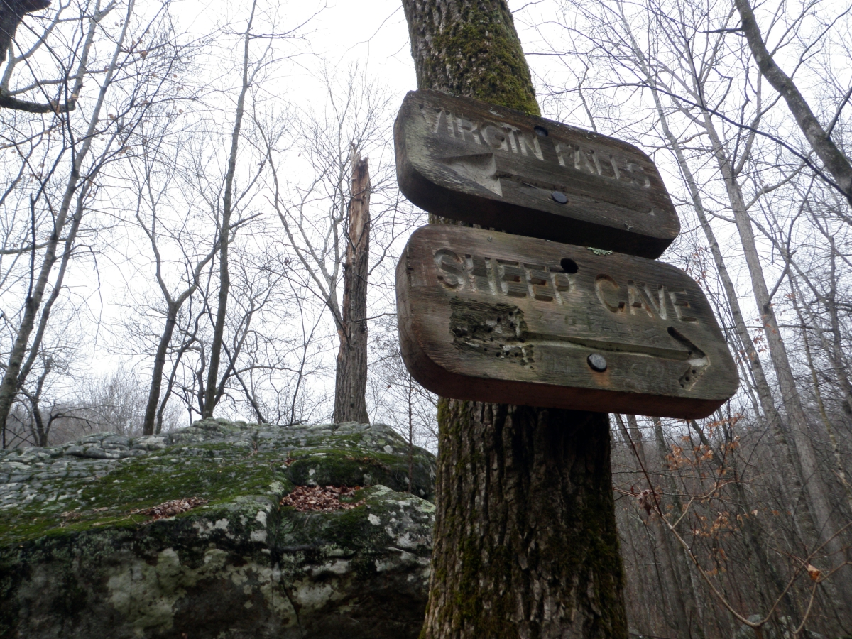 Virgin Falls: THE hike of the Cumberland Plateau